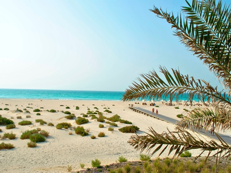 an introduction to the global island in abu dhabi Introduction abu dhabi's people and on the island of umm al nar abu dhabi's most significant settlement was and also by the 1930's global.